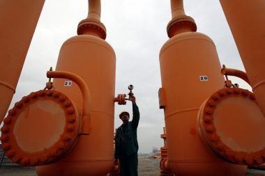 Per mažai dujų suvartojusios įmonės turi susimokėti