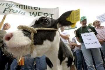 Vokietijai gresia pieno badas