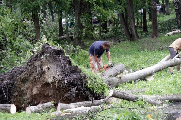 Kauno rajono gyventojams uždrausta eiti į miškus