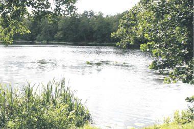 Mumlaukio ežeras Klaipėdoje bus skaidresnis