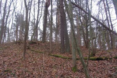 Neries regioniniame parke atrastas piliakalnis