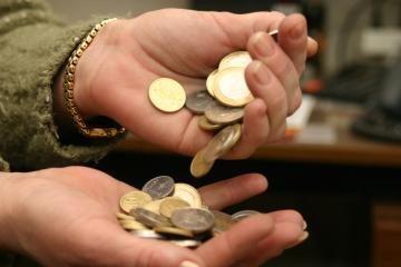Valstybės pajamos pasiklysta mokesčių labirintuose