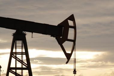 Rusijos naftos koncernas TNK-BP domisi