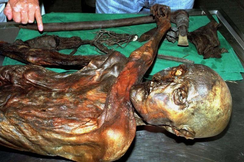 Mokslininkai mano turintys seniausią pasaulyje žmogaus kraujo mėginį