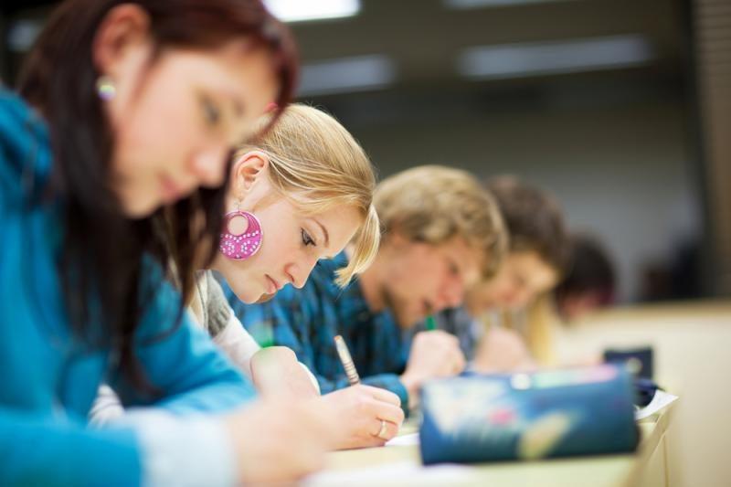 Po aštuntos klasės - raštingumo patikrinimas