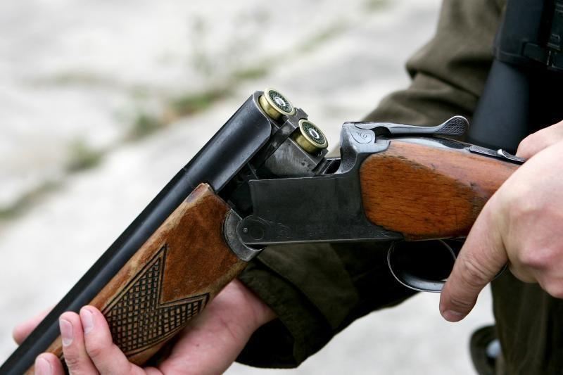 Šakių rajone ieškomas į šunį šaudęs asmuo