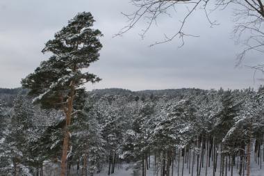 Savaitgalio orai: šlapdriba, sniegas ir lietus