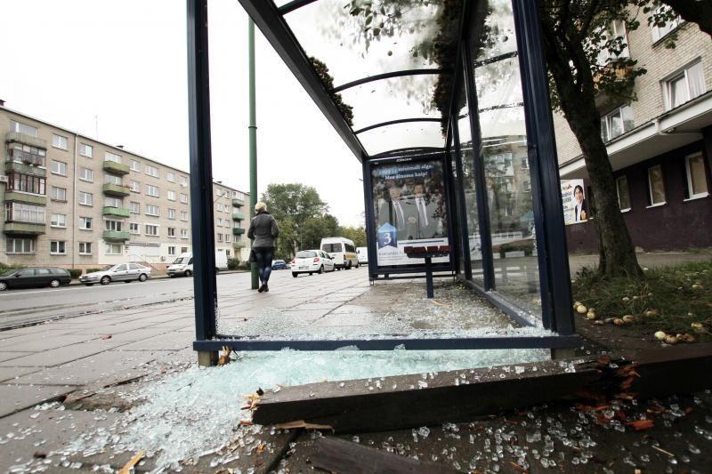 Klaipėdos politikai siūlo nenaudoti stotelėse brangaus grūdinto stiklo