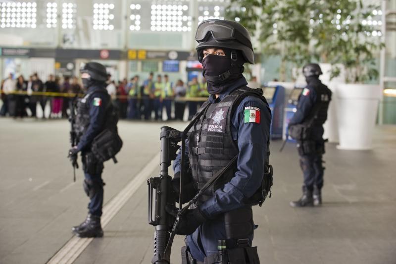Meksikoje žuvo devyni į pasalą patekę policininkai