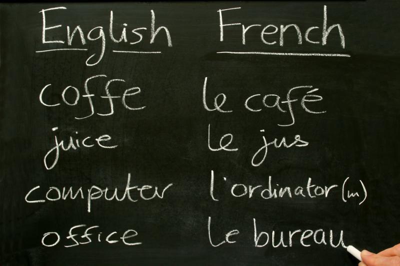 Kalbos mokymuisi svarbu ir amžius, ir genai