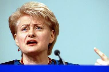 """D.Grybauskaitė: antikrizinis planas yra """"per švelnus"""""""