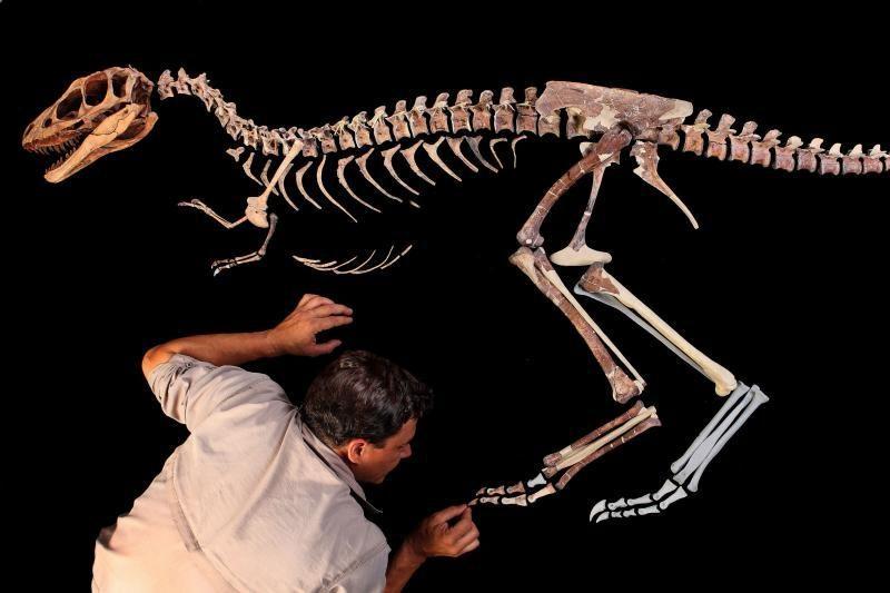 Didysis dinozauras buvo lengvesnis, nei manyta lig šiol