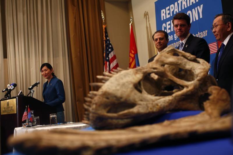 JAV grąžino Mongolijai tiranozauro griaučius