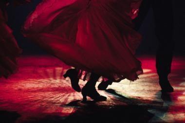 Greičiausias pasaulyje flamenko šokėjas lankysis Vilniuje