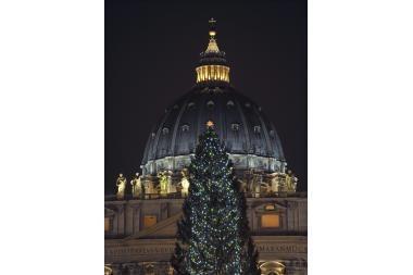 Iš Vatikano kalėdinės eglės bus pagaminti žaislai