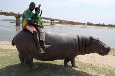 Sustabdyta akimirka: gyvūnijos pasaulyje
