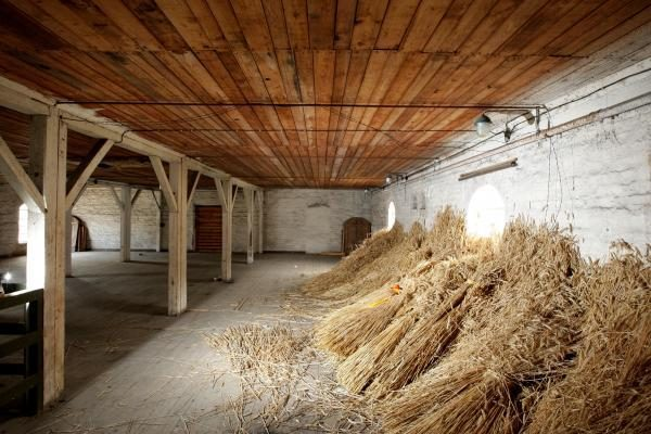 EK panaikinus pašarinių grūdų muitus, Lietuvos ūkininkai ėmė tuštinti sandėlius