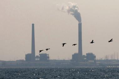 Paroda patars kaip stabdyti klimato kaitą