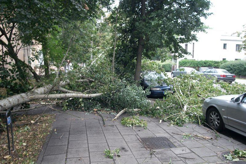 Liepą siautusios audros nuostoliams padengti - beveik 30 tūkst. litų