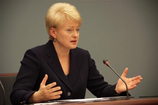 D.Grybauskaitė: tyrimas patvirtino netiesioginius įtarimus dėl CŽV kalėjimo