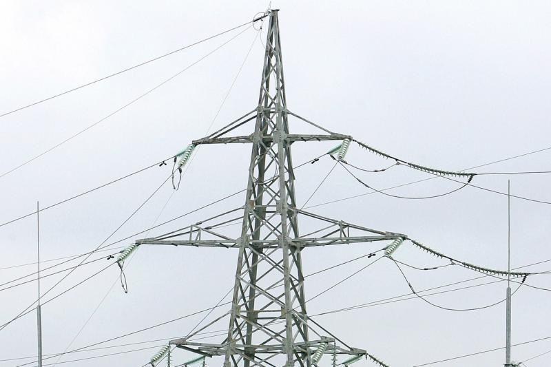 VSD susisiekė su elektros tiltą kritikuojančia moterimi iš Rudaminos