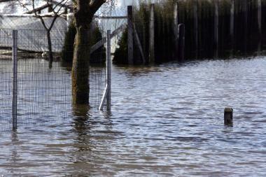 Dėl Nevėžio potvynio - ekstremali situacija Naujatrobių kaime (papildyta)