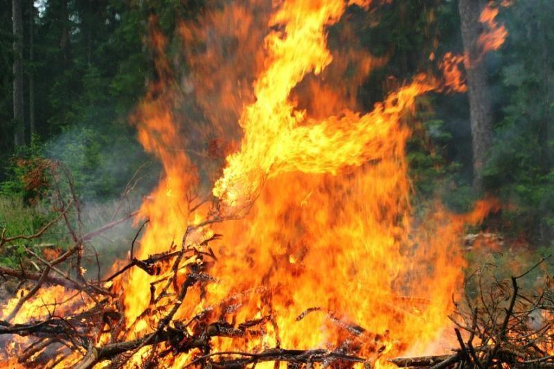 Ugniagesiai perspėja dėl pavojų deginant pernykštę žolę