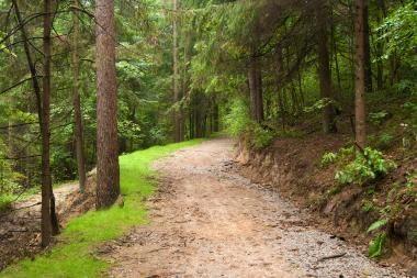 Po rudenėjantį Verkių parką - dviračiais ir pėsčiomis