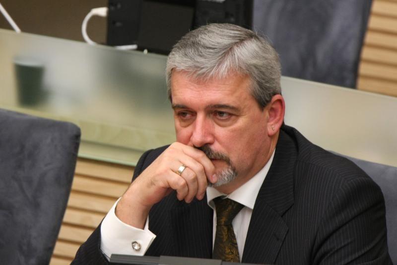 Seimui bus pateikta E.Tamašausko kandidatūra į vicepirmininko postą