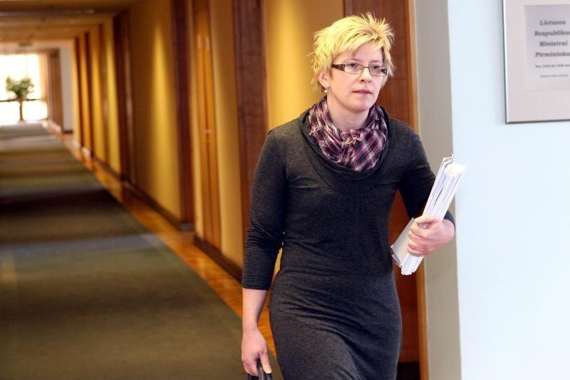 I.Šimonytė abejoja, ar Seimas spės priimti 2013 metų biudžetą