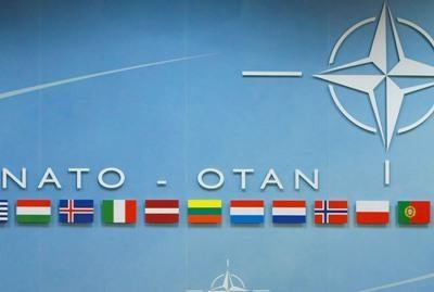 V.Adamkus tikisi, kad NATO aktyviai parems Gruziją