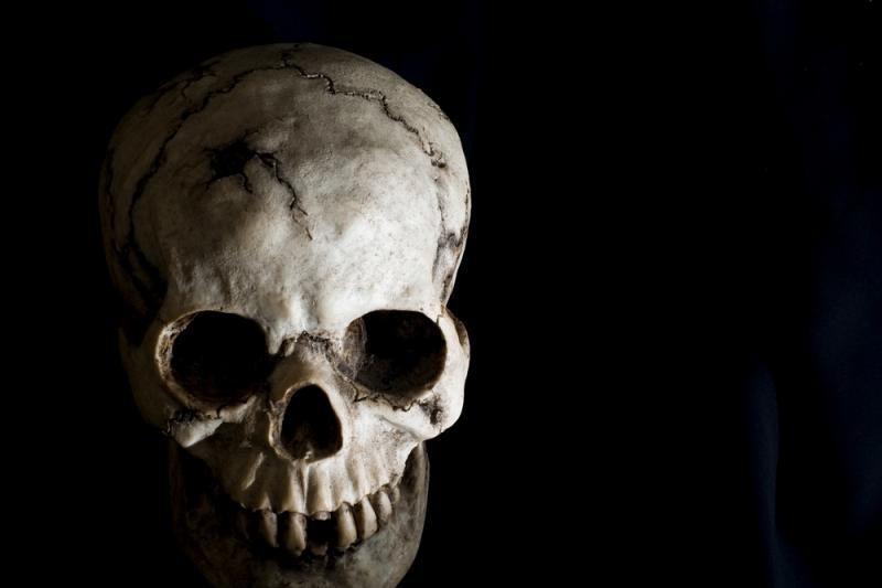 Alytaus rajono karjere rasta žmogaus kaukolė