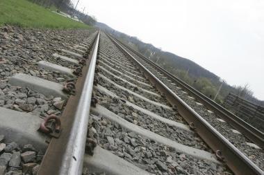 Ant geležinkelio nuvirtus medžiui, sutriko traukinių eismas tarp Kauno ir Vilniaus