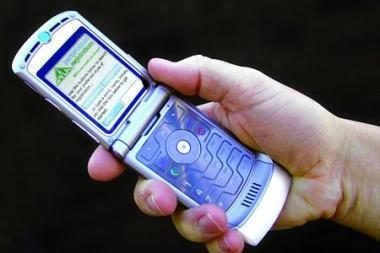 Mirtinas SMS rašymas prie vairo