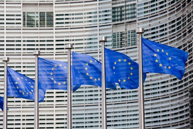Briuselis: kodėl partijų nariais gali būti tik Lietuvos piliečiai?