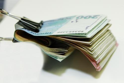 Vyriausybė: Vaikų išlaikymo fondas nenaikinamas