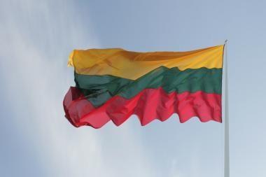 Vilniečiai, išsikelkite vėliavas - kitaip gresia baudos