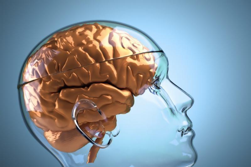 Mokslininkai žada, kad ateityje galėsime nuspėti kitų elgesį