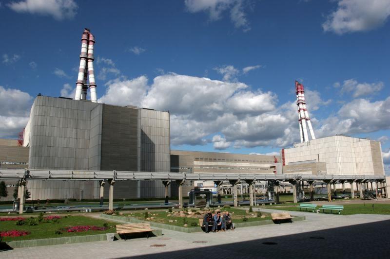 V.Žiemelis siūlo skelbti referendumą dėl naujos atominės elektrinės
