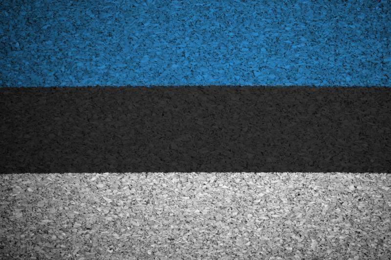 Estija ir Rusija po septynerių metų atnaujino derybas dėl sienų