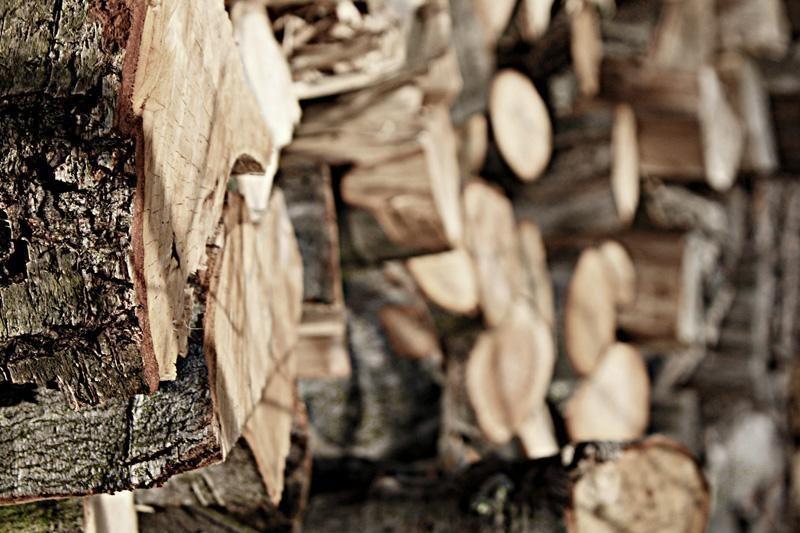 Pirmąkart vyko elektroninė prekyba mediena