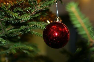 Britams siūloma Kalėdoms nusipirkti pusinių arba atvirkštinių eglučių