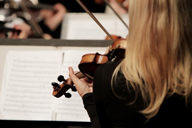 Viena Naujuosius metus pasitiks su Vagnerio ir Verdžio muzika