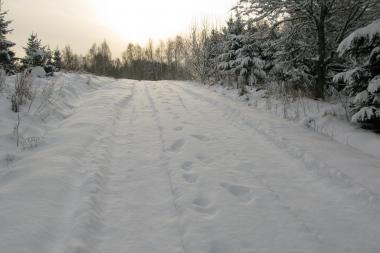 Sniego audrų nebus, tačiau šals