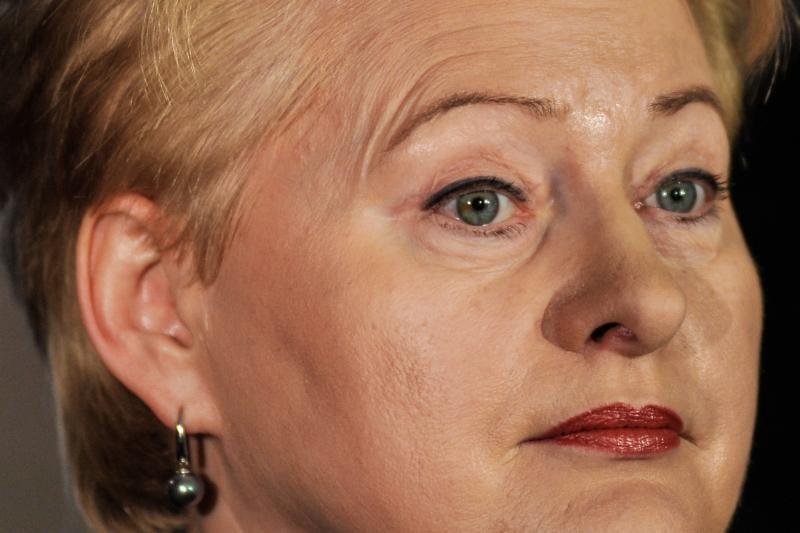 D. Grybauskaitė globoja Šiaurės  Korėją?
