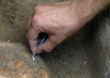 Archeologai: aptikti kaulai - dar ne kapavietė