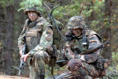 V.Adamkus atmeta raginimus keisti gynybos strategiją