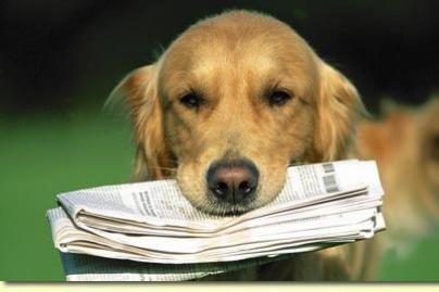 Valstybė rems laikraščių pristatymą prenumeratoriams