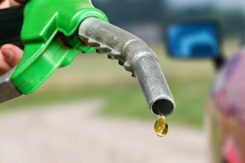 Biodegalai nepateisino Europos Sąjungos lūkesčių
