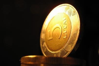 Grynųjų pinigų apyvartoje - 8,9 mlrd. litų